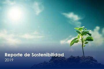 Reporte Sostenibilidad 2019